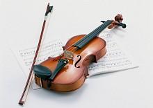 увлажнители Brune для хранения музыкальных инструментов