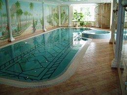 осушители Brune для бассейнов